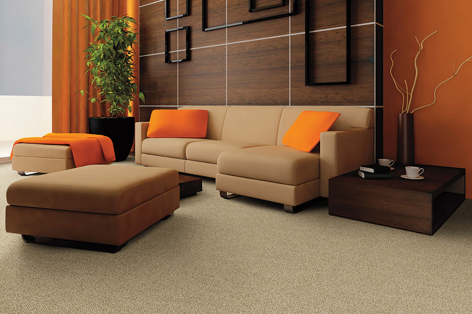 Carpeting Styles and Designs for All Interiors
