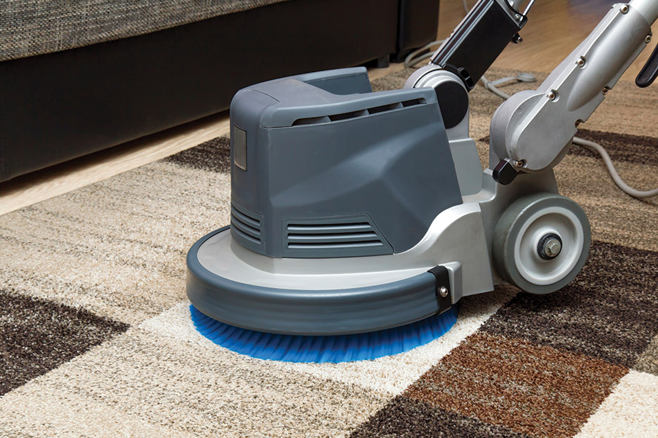 The Best Carpet and Floor Cleaning Services