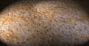 Eco-Friendly cork flooring
